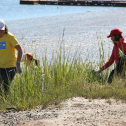 2016-river-clean-up-15